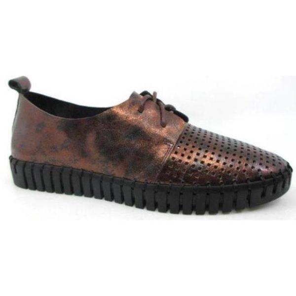 Copper Shoe
